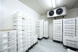 Cold Storage Refrigeration - Tempest